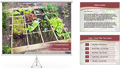 0000083187 PowerPoint Template