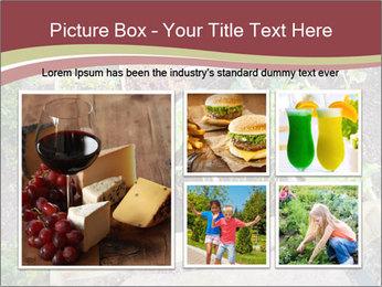0000083187 PowerPoint Template - Slide 19