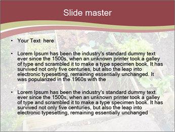 0000083187 PowerPoint Template - Slide 2