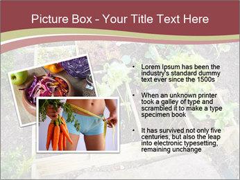 0000083187 PowerPoint Template - Slide 20