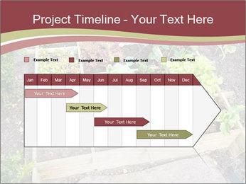 0000083187 PowerPoint Template - Slide 25
