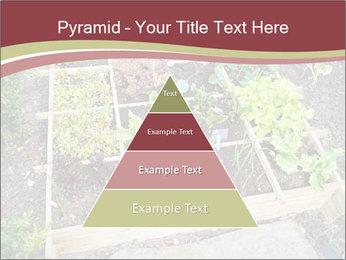 0000083187 PowerPoint Template - Slide 30