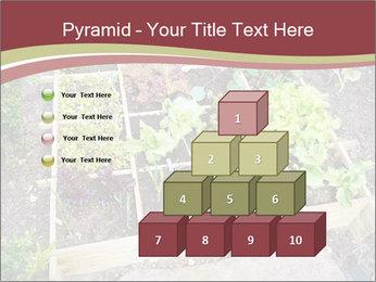 0000083187 PowerPoint Template - Slide 31
