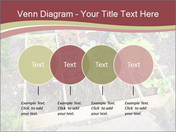 0000083187 PowerPoint Template - Slide 32