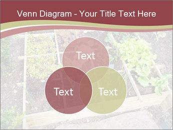0000083187 PowerPoint Template - Slide 33