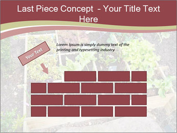 0000083187 PowerPoint Template - Slide 46