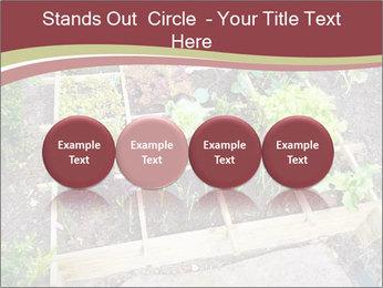 0000083187 PowerPoint Template - Slide 76