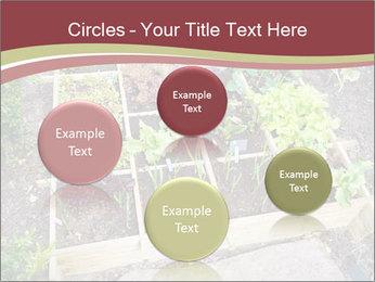 0000083187 PowerPoint Template - Slide 77