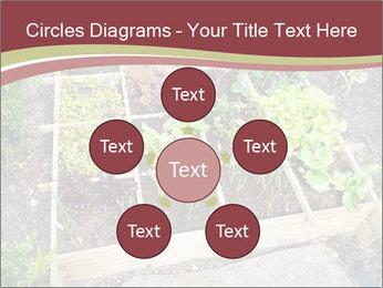 0000083187 PowerPoint Template - Slide 78