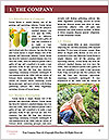0000083187 Word Templates - Page 3