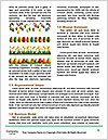0000083198 Word Templates - Page 4