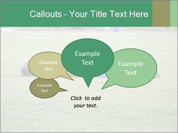 0000083201 PowerPoint Templates - Slide 73