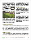 0000083201 Word Template - Page 4