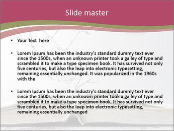 0000083203 PowerPoint Template - Slide 2