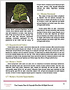 0000083203 Word Templates - Page 4
