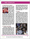 0000083206 Word Template - Page 3