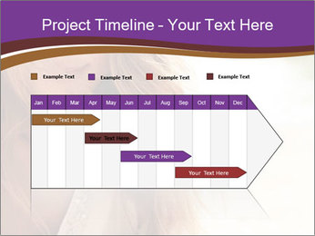 0000083213 PowerPoint Template - Slide 25