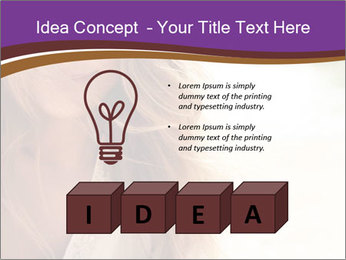 0000083213 PowerPoint Template - Slide 80