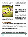 0000083215 Word Templates - Page 4