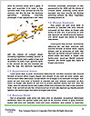0000083220 Word Template - Page 4