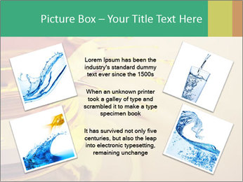 0000083221 PowerPoint Template - Slide 24