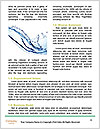 0000083221 Word Template - Page 4