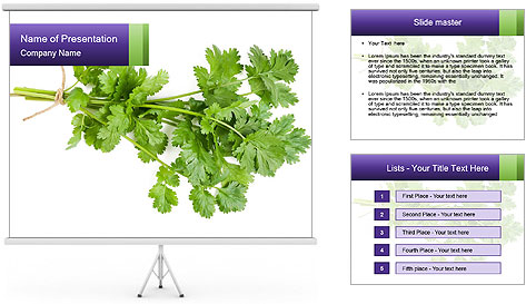 0000083222 PowerPoint Template