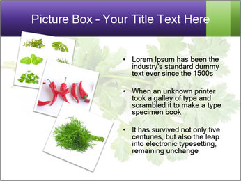 0000083222 PowerPoint Template - Slide 17
