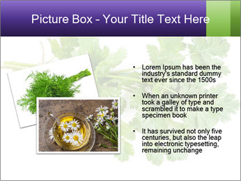 0000083222 PowerPoint Templates - Slide 20