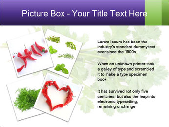 0000083222 PowerPoint Template - Slide 23