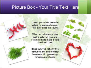 0000083222 PowerPoint Template - Slide 24