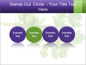 0000083222 PowerPoint Template - Slide 76