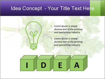 0000083222 PowerPoint Template - Slide 80