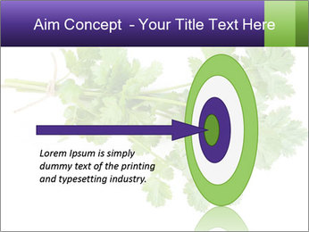 0000083222 PowerPoint Template - Slide 83