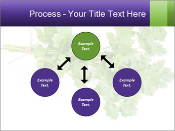 0000083222 PowerPoint Template - Slide 91