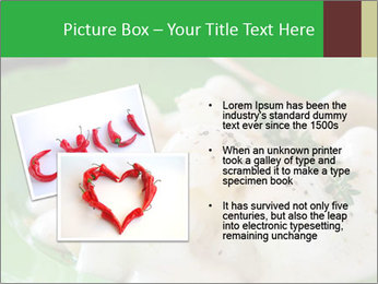 0000083223 PowerPoint Template - Slide 20