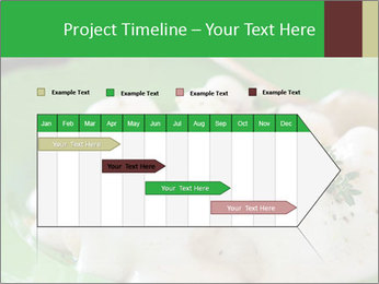 0000083223 PowerPoint Template - Slide 25