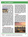 0000083229 Word Template - Page 3