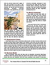 0000083229 Word Template - Page 4