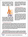 0000083235 Word Template - Page 4