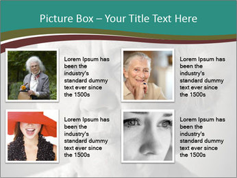 0000083240 PowerPoint Template - Slide 14
