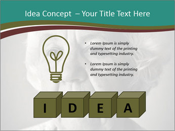 0000083240 PowerPoint Template - Slide 80