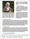0000083240 Word Templates - Page 4