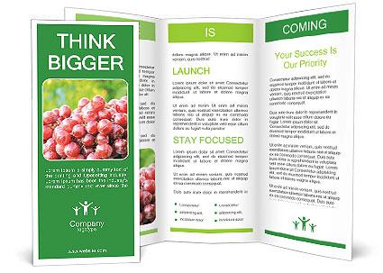 0000083246 Brochure Template