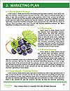 0000083246 Word Templates - Page 8