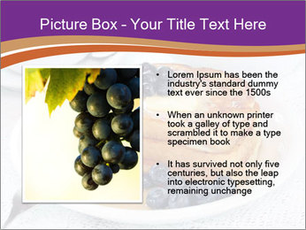 0000083248 PowerPoint Templates - Slide 13