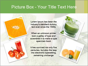 0000083253 PowerPoint Templates - Slide 24