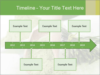 0000083253 PowerPoint Templates - Slide 28