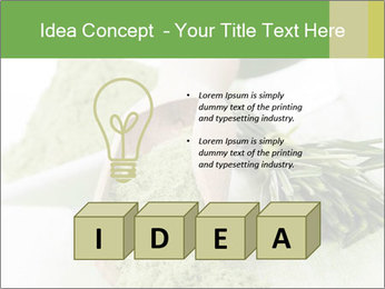0000083253 PowerPoint Templates - Slide 80