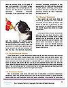 0000083254 Word Templates - Page 4
